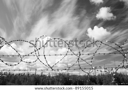 Lost freedom behind barbed wire. Law. Black amd white photo - stock photo
