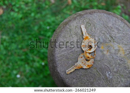 Lost Rusty Keys, Left Abandoned on a Post - stock photo