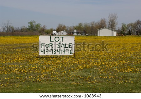 Lot for sale sign - dandelions in field - northern OH