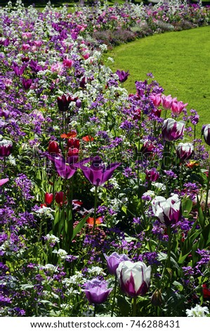 Lot of flowers in public garden at spring and green lawn