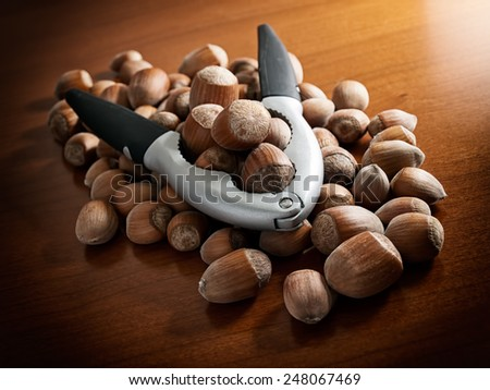 Lot of hazelnuts and pliers for crashing nutshell. - stock photo