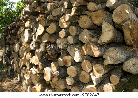 Lot of lumber stacked in pile - stock photo