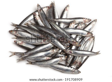 lots of anchovies - stock photo