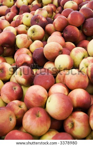 Lots of Apples - stock photo