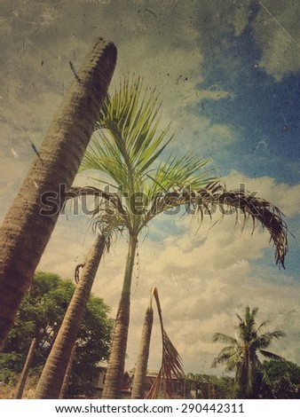 Lots of dead palm trees- grunge style - stock photo