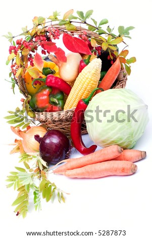 lots of fresh and ripe vegetables in the basket