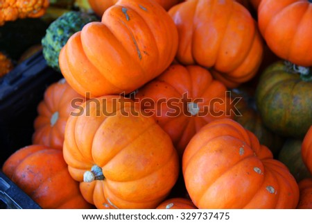 Lots of pumpkins, great for fall background - stock photo