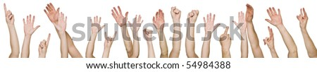 Lots of raised hands isolated on white background - stock photo