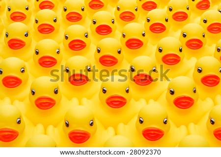 Lots of rubber ducks - stock photo