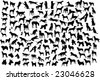 Lots of silhouettes of different breeds of dogs in action and static. See also vector format - stock vector