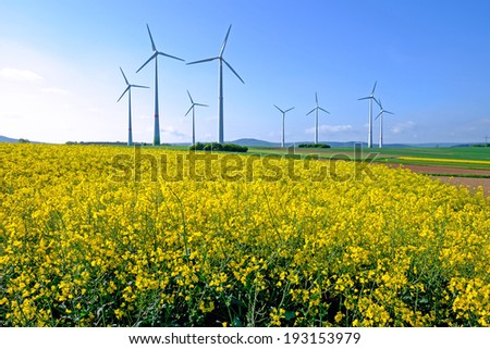 Lots of windwheels in a field of blooming rapeseed - stock photo