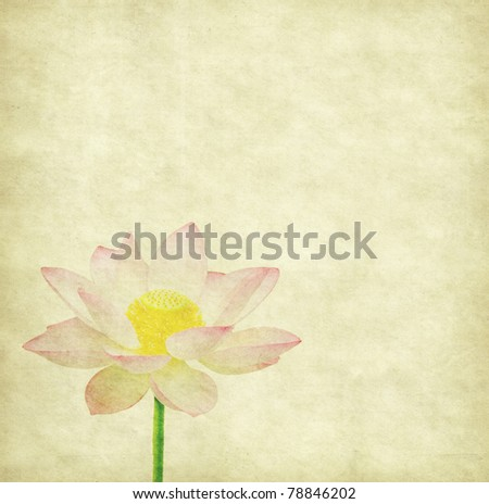 lotus and bamboo on Old antique vintage paper background