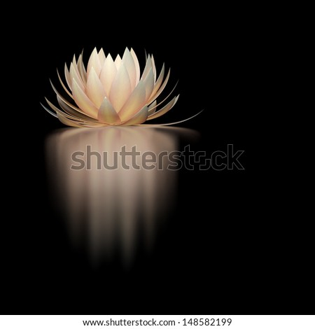 lotus flower on a black background - stock photo