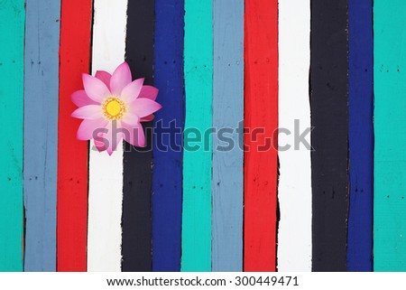 lotus flower on colorful wooden panel - stock photo
