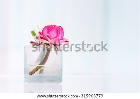 Lotus flower or water lily decoration in glass vase on table, Buddhism and zen  - stock photo