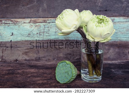 lotus flowers in glass vase on wooden background - stock photo