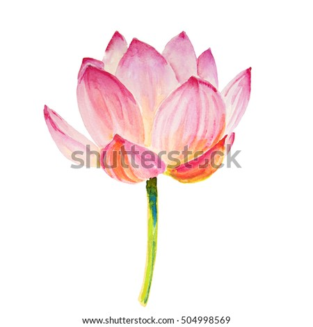 Lotus isolated on white. watercolor illustration for design