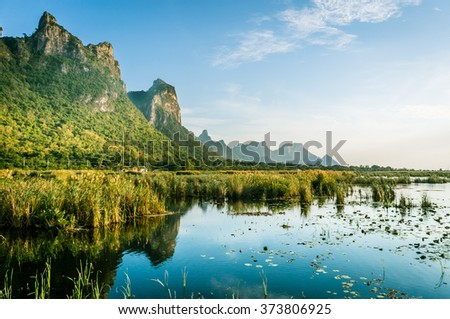 Lotus pond with mountain / Peaceful and relaxing