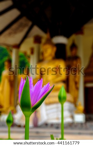 Lotus with Buddha Image background in Buddhist temple, Thailand - stock photo