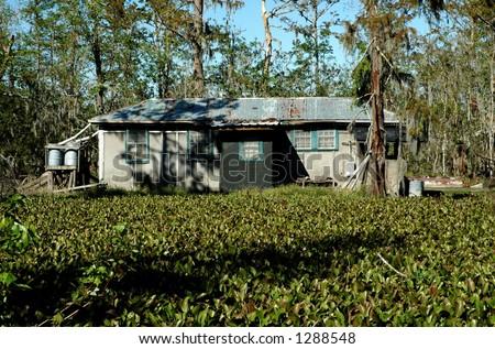 Louisiana Swamp Home - stock photo