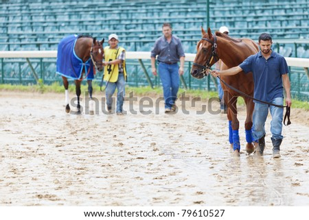 LOUISVILLE, KY - JUNE 18: Stephen Foster Day at Churchill Downs horse race track June 18, 2011 in Louisville, KY. Horse handlers lead horses to the paddock for the Presentation Academy Classic race. - stock photo