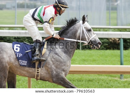 LOUISVILLE, KY - JUNE 18: Stephen Foster Day at Churchill Downs horse race track June 18, 2011 in Louisville, KY. VIP (jockey Aldo Canchano) places 6th at the Arabians race - stock photo
