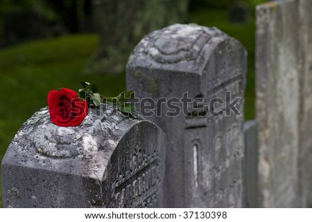 Love and Loss - stock photo