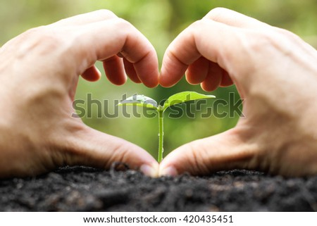 Love and protect nature - stock photo