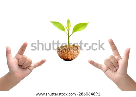 Love hand sign and green small tree in ground isolated on white background - stock photo
