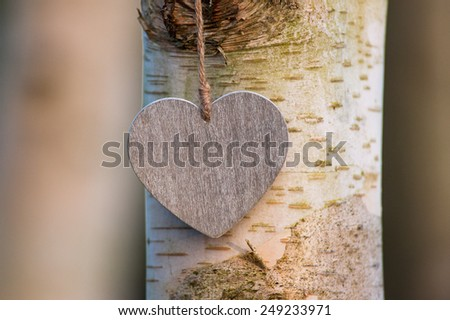 love heart tree trunk background  - stock photo