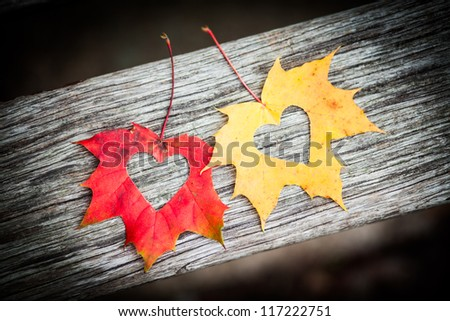 Love hearts on red and yellow autumn leaves with wooden background. - stock photo