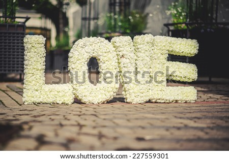 LOVE word made of roses  - stock photo