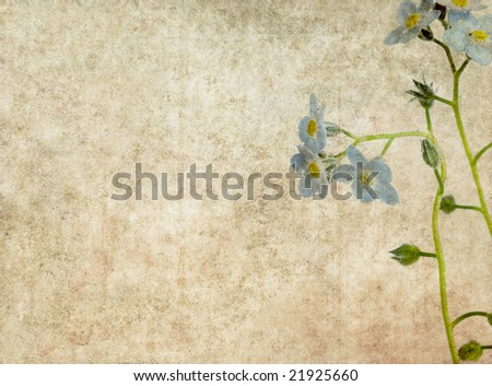 lovely background image with blue floral elements