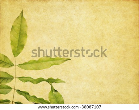 lovely background image with earthy texture and floral elements. useful design element.