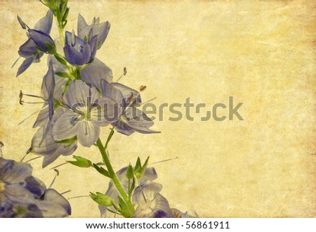 lovely background image with floral elements and earthy texture