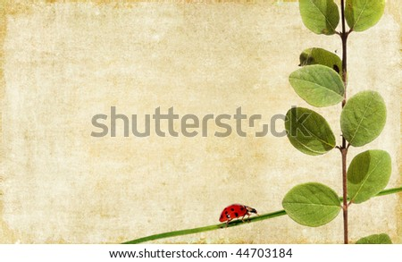 lovely background image with ladybird and floral elements. useful design element. - stock photo