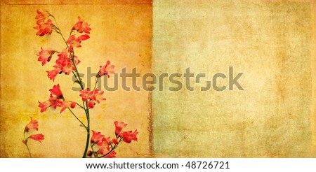 lovely background image with spring flora