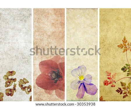 lovely banners with floral elements and earthy texture. very useful design elements. - stock photo