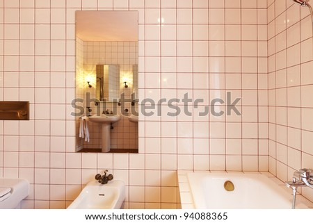 lovely bathroom in classical style, bath and bidet - stock photo
