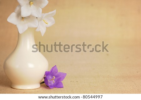 Lovely Bellflowers with White Vase on Textured Burlap Background with Room for Text - stock photo