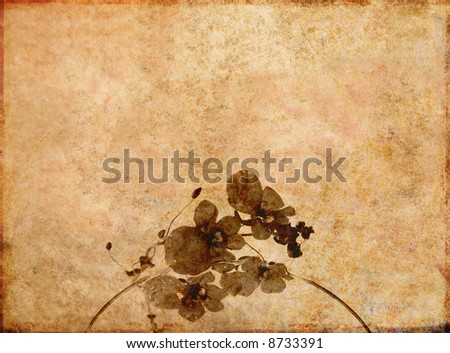 lovely brown background image with interesting texture and floral elements and plenty of space for text - stock photo