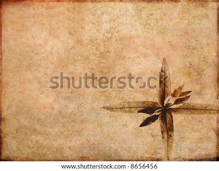 lovely brown background image with interesting texture and floral elements with plenty of space for text - stock photo