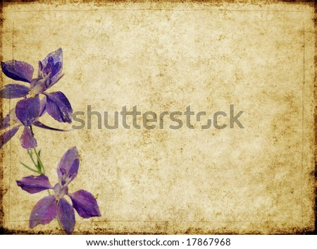 lovely brown background image with interesting texture and purple floral elements
