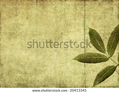 lovely brown background image with leaves