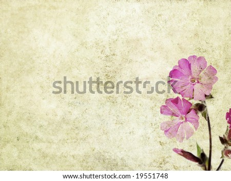 lovely brown background image with pink floral elements