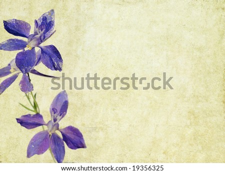 lovely brown background image with purple floral elements