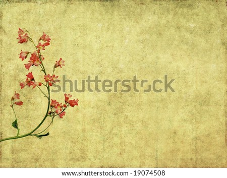 lovely brown background image with red floral elements