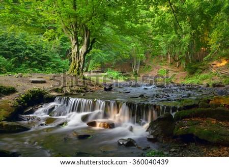 Lovely cascade waterfall in the forest. Spring/summer mountains. - stock photo