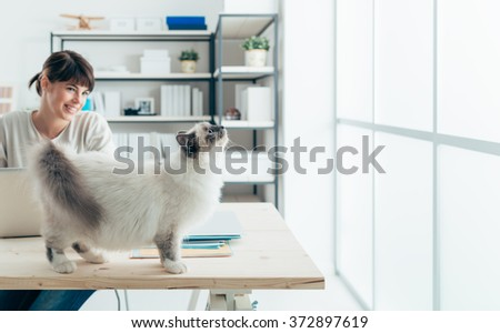 Lovely curious female cat on a desk looking at the window, her owner is smiling and looking at her - stock photo