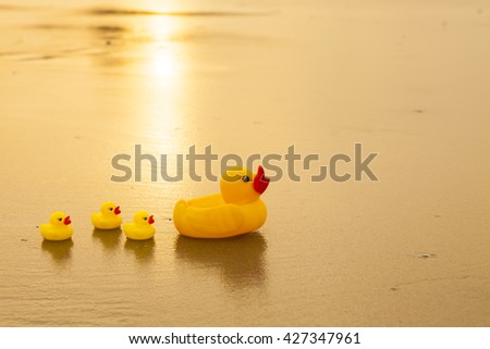 lovely duck on the beach in the scenery morning. - stock photo